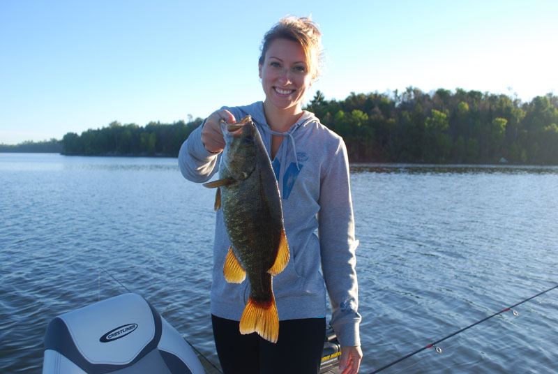 Northern MN Fishing Resort Pelican Lake in Orr | Birch Forest Lodge